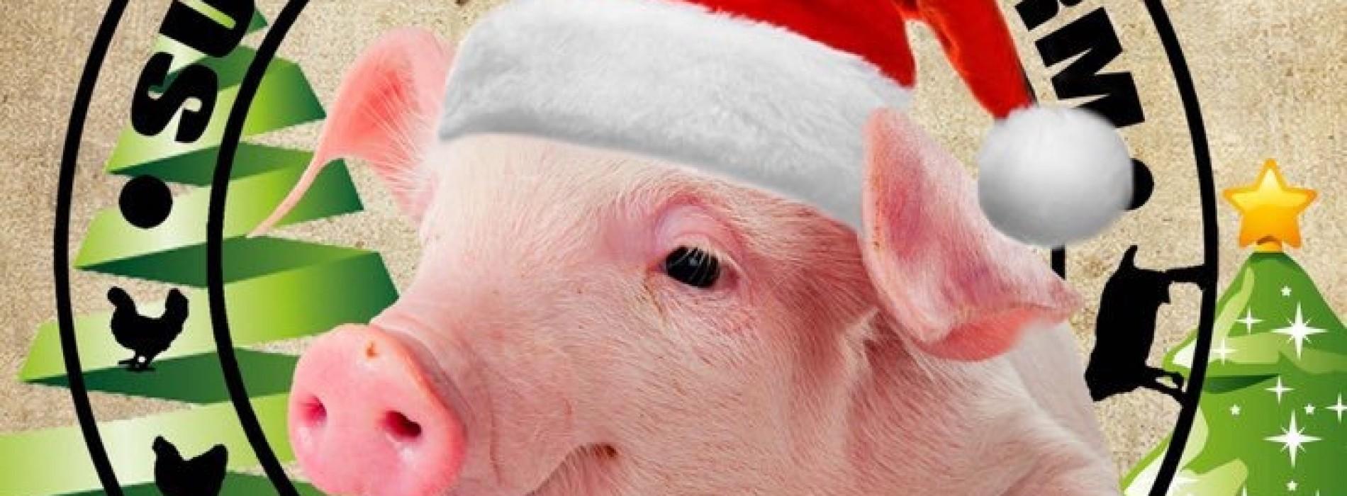 The Surrey Docks Farm Christmas Fair