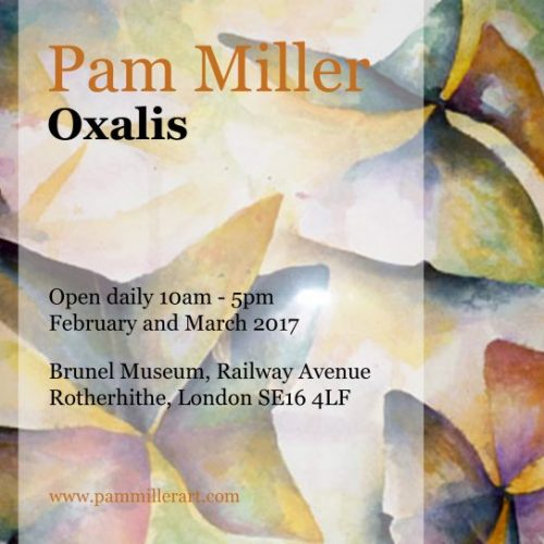 Brunel Cafe Exhibition – Pam Miller – Oxalis