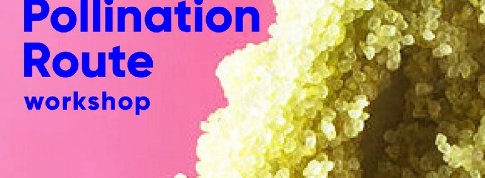 Pollination Route Workshop at Diaspore