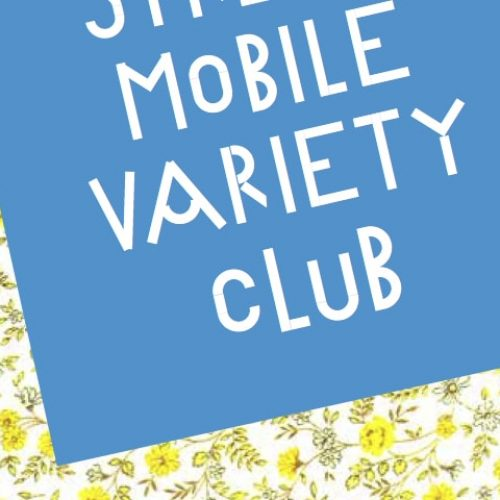 CGP Dilston Grove – Seniors Art School – Mobile Variety Club