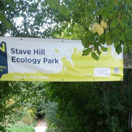 A visit to the Stave Hill Ecological Park in Rotherhithe