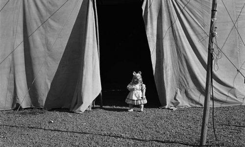Cecilia Brunson Projects presents Paz Errázuriz: Circo (Circus)