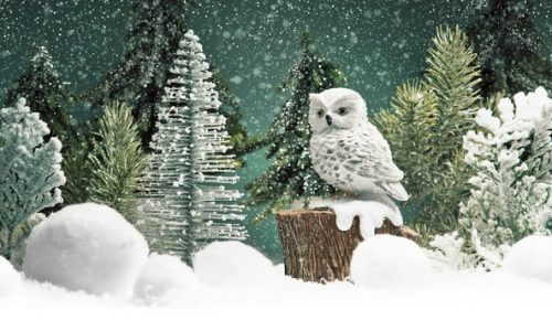 Santa and The Wishmas Owl at Surrey Quays Shopping Centre