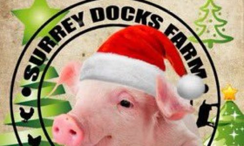 Surrey Docks Farm Christmas Fair 2019
